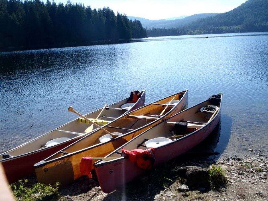 shore canoes